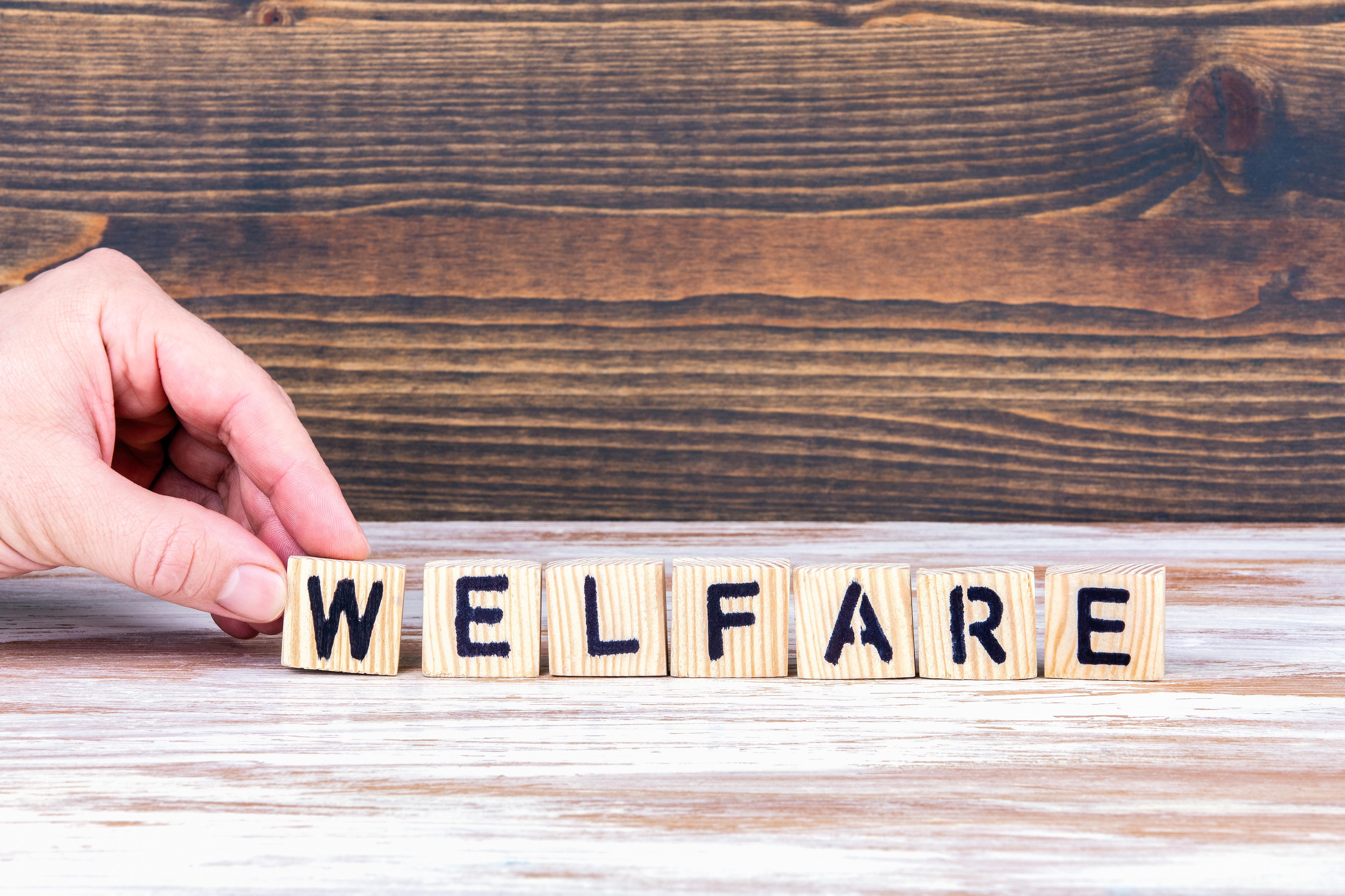 Bassano Welfare Day: Come Risparmiare Tasse, Premiando I Propri Dipendenti!